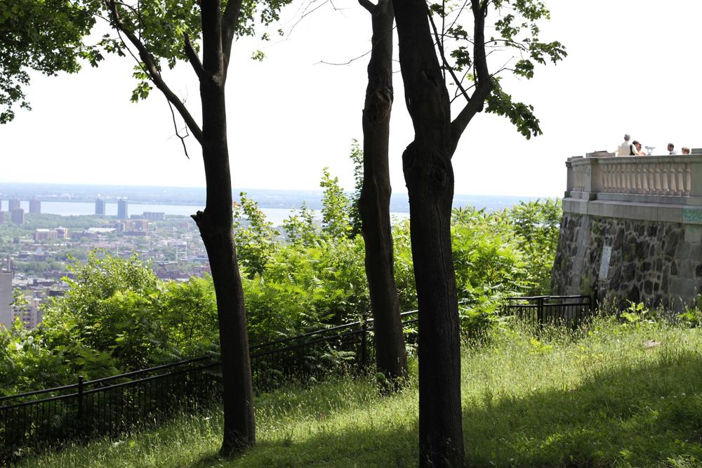 jackielay_montreal_city04